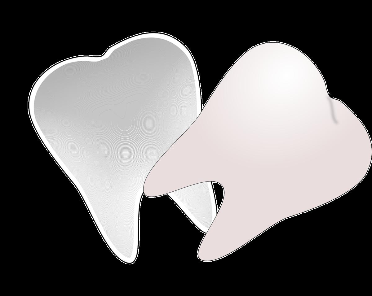 Śliczne nienaganne zęby także godny podziwu uroczy uśmieszek to powód do zadowolenia.